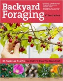 backyard-foraging