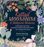 cattail-moonshine-milkweed-medicine